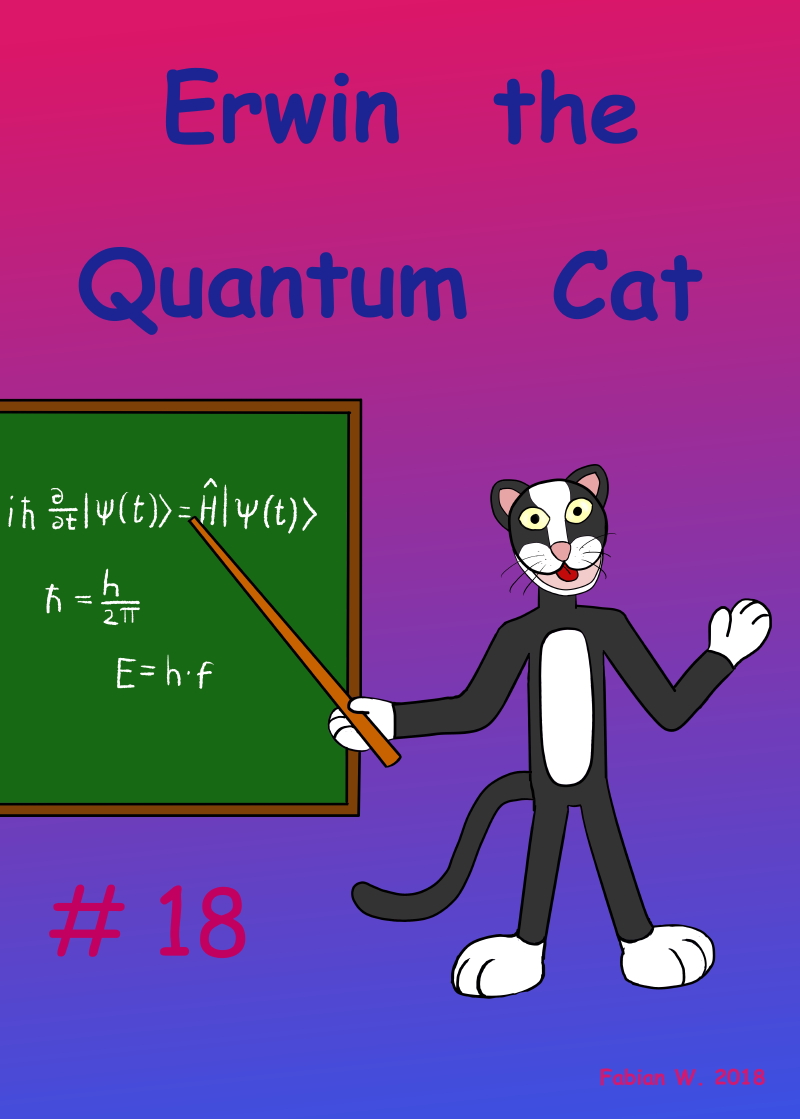 # 18 Erwin the Quantum Cat